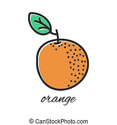Hand drawn orange in doodle style. Vector illustration.