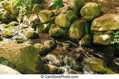 kamienie, potok,  oliva, las, Drewna,  Gdańsk,  Park