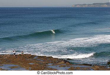 A surfer takes off on a nice wave at Newcastle Beach.