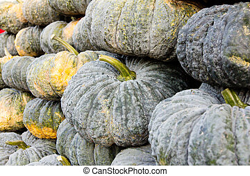 pile of pumpkin in market