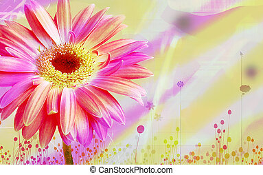 Flora BAckground - Background with various colorful flower...