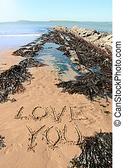 love you sand - a romantic love you message inscribed on the...
