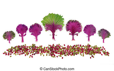 Food Art Abstract - Cabbage with aduki and mung bean pulses...