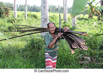 Philippine wood-cutter - Elder Philippine gentleman carrying...