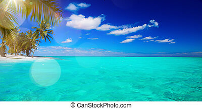 art Untouched tropical beach - Abstract beautiful beach and...