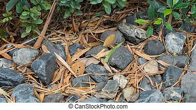 Rough rock land ground texture