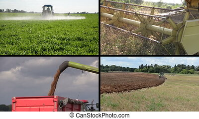 agriculture works collage - Tractor spray fertilize field...
