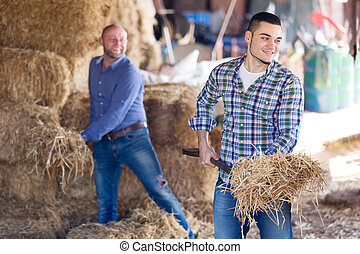 Two farm workers in hayloft - Adult happy farm workers...
