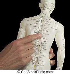 Acupuncturist pointing to BL17 - Close up of a female...