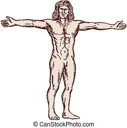 Vitruvian Man Arms Spread Front Etching - Etching engraving...