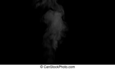 Jet of Steam from the Kettle - Swirling flow of steam or...