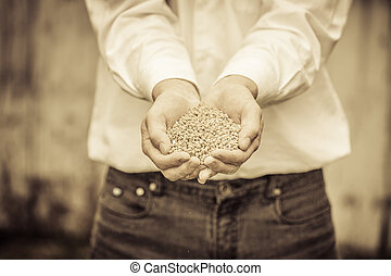 Farmer Showing Animal Dry Food in its hands
