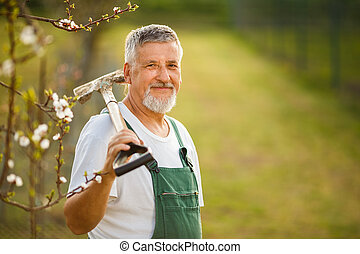Portrait of a handsome senior man gardening in his garden,...