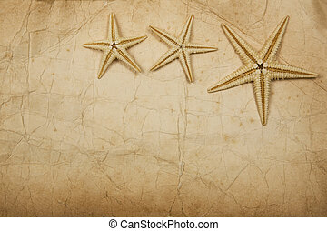 Sepia Starfish Paper - Old foxed paper background with...