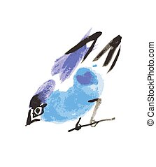 watercolor drawing bird, robin at white background, hand...