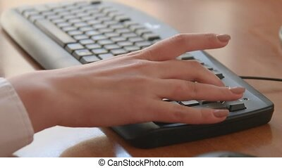 Female Hands Typing on Computer Keyboard - Female hands...