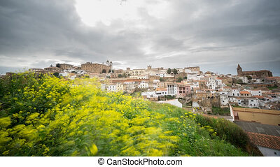 Time Lapse of Caceres, cloudy sky, yellow flowers in the foreground