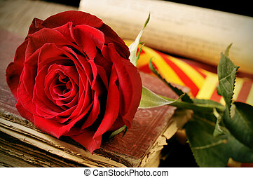 book, red rose and the catalan flag for Sant Jordi, Saint...