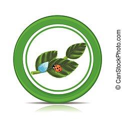 Eco green leaf icon