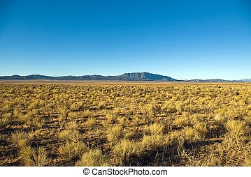 High Desert - View of miles of sagebrush with a blue...