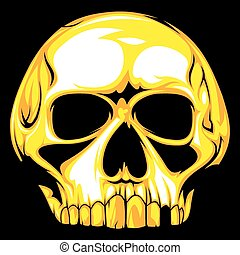 human skull - nice human skull on the black background