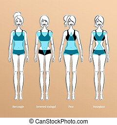 Female body types.