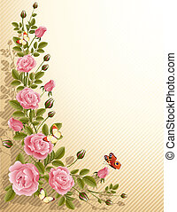 roses - fine blossoming roses