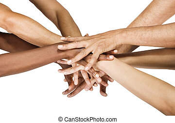 Hands group - Pile of hands isolated on white, Caucasian,...