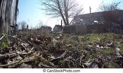 Pollution, dumping of garbage. The camera moves along the...