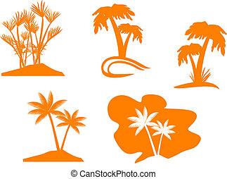 palma, albero, set