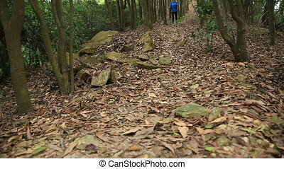 young woman hiker walking on forest trail