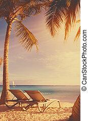 トロピカル, 芸術, 浜,  deckchairs
