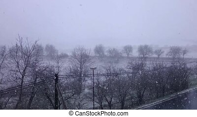 Heavy snowstorm - View to the countryside with road, lamp...