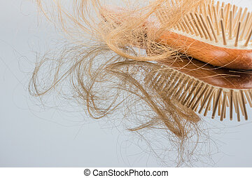 hair brush - a hair brush with haeren beginning of hair loss...