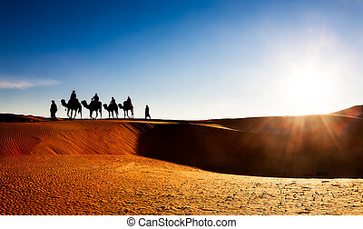 Camel caravan on sand dunes in the desert at sunrise. Erg...