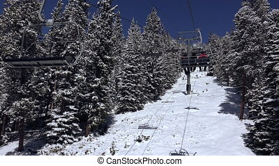 Riding Chairlift Trees Coated - Skiing at a resort...