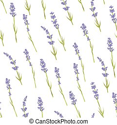 Seamless lavender pattern - Seamless pattern with hand drawn...