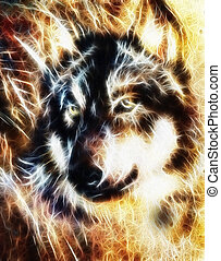 Wolf , multicolor collage fractal effect - Wolf and eagle...