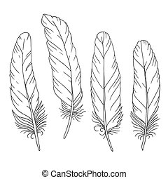 Hand drawn feathers set on white background. Vector...