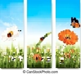 Nature summer banners with colorful flowers and butterfly. Vector.