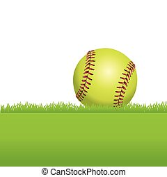 A Softball Sitting on Grass - An illustration of a realistic...