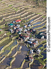 The world heritage Rice terraces in Batad, northern Luzon,...