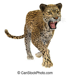 Leopard - 3D digital render of a running leopard isolated on...