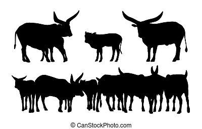 sacred african cows silhouettes set - realistic silhouettes...