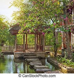 asiático, tropical, jardín,