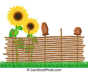 wicker fence of twigs with sunflowers illustration