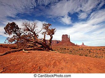 Desert Landscape - Panoramic view of desert landscape There...