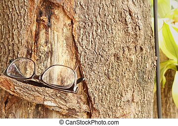 Glasses on a brown background of tree.