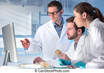 laboratory - group of scientists working at the laboratory