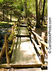 Narrow wooden bridge in the park leading the path to the...